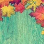 Autumn frame — Stock Photo #48536655