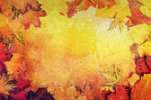 Autumn leaves frame — Stock Photo