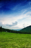 Carpathian mountain landscape — Foto de Stock