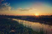 Rural summer sunrise — Stock Photo