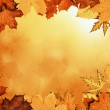 Autumn leaves frame — Stock Photo #51422355