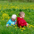 Royalty-Free Stock Vector Image: Boy and small girl  on meadow with dandelion