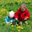 Boy and small girl  on meadow with dandelion — Stock Video