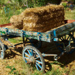 Vintage coach — Stock Photo #13875047