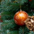 Christmas Tree Ornament — Stock Photo #16947605