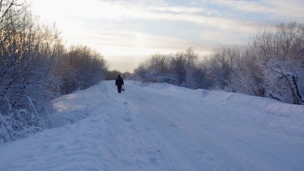 Camino en un campo en día soleado invierno arco iris. — Vídeo de stock