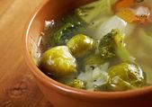 Italian farm-style soup — Stock Photo