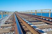 Pont ferroviaire de la route — Photo