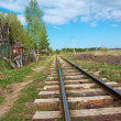 Railway to horizon — Stock Photo #26598241