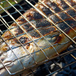 Stock Photo: Salmon cooking on a grill