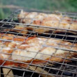 .Rock Fish on the grill with flames — Stock Video