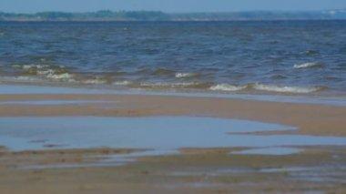 川 willowwacks の海岸 — ストックビデオ