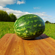 Watermelon on a wooden table — Photo