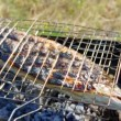 Atlantic salmon  cooking on a grill — Video