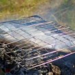 Stock Video: Salmon cooking on a grill
