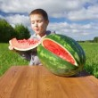 Boy eating watermelon — Stock Video