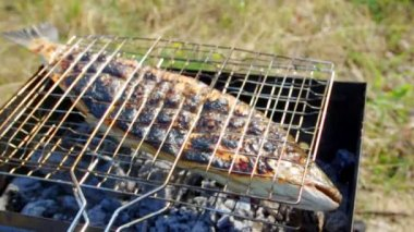 Atlantic salmon cooking on a grill — Stock Video #34795529