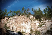 Beautiful hilly landscape of the timber canyon — Stock Photo