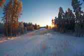 Winter landscape .Winter scene  — Stock Photo