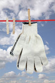 Two working gloves — Stock Photo