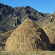 Stock Photo: Two haystacks