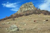 Beautiful view of the mountain — Stock Photo