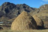 Two haystacks — Stock Photo