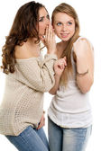 две молодые женщины болтливый — Стоковое фото