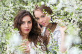 Two nice caucasian ladies — Stock Photo