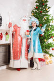 Jultomten och snow maiden — Stockfoto