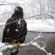 Stock Video: Golden eagle, winter