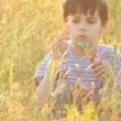 Boy blowing bubbles in a field — Stock Video
