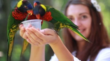 Smiling girl with colorful parrot in the jungle — Stock Video