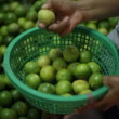 Stock Video: Lime, fruit market