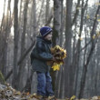 Boy playing with leaves in the woods — Stock Video