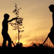 Father and son planting a tree. — Stock Video