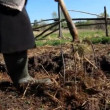 Ploughing the Field — Stock Video