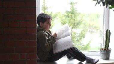 Boy reads a book — Stock Video