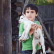 Boy with little goat — Stock Photo
