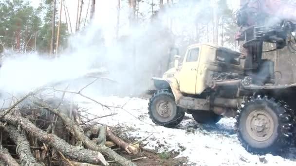 La cosechadora trabajando en un bosque — Vídeo de stock