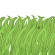 Green grass background — Stock Vector