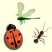 A set of various insects — Stock Vector