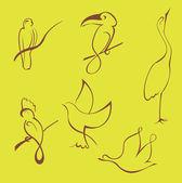 Bird Design Set — Stock Vector