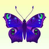 Schmetterlin — Stockvektor