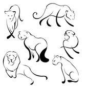 Lion Design Set — Stock Vector