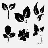 Leaves silhouettes — Stock Vector