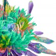 Stock Photo: Abstract flower background. Aster