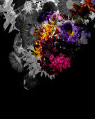 Abstract flower background. — Stock Photo