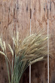 Bundle of the gold wheat ears — Stock Photo