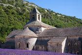 Abbaye Notre-Dame de Sénanque — Stock Photo